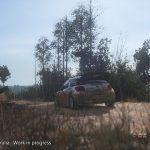 Sebastien Loeb Rally Evo Torrent