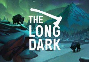 The Long Dark crack
